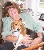Redbone Coonhound Beagle Mix